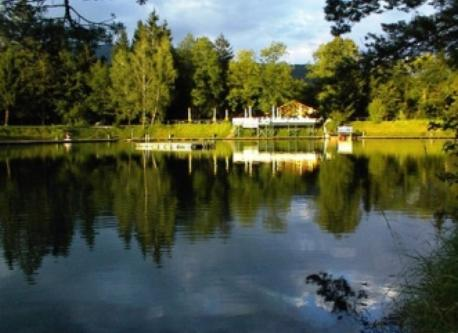 lake with swimming opportunity in Anif