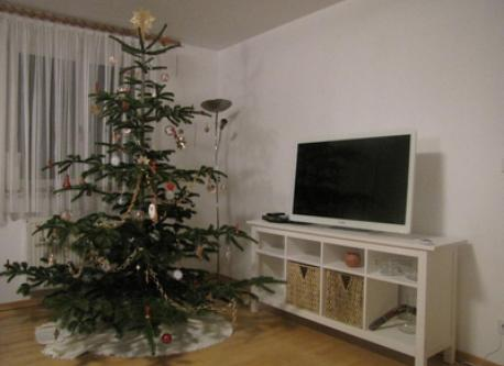 TV with Christmas tree