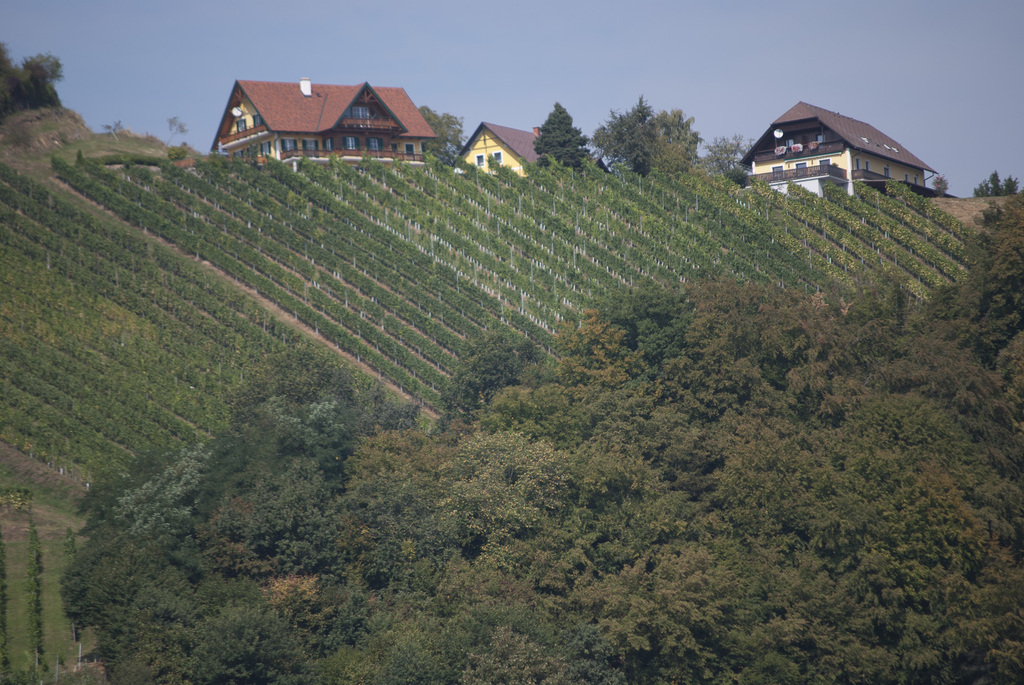 Weinland  (Vineyards - South of Styria), 60 km distance