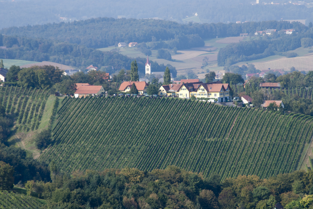 Weinland (Vineyards - South of Styria)