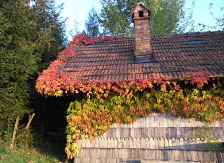 our garden house
