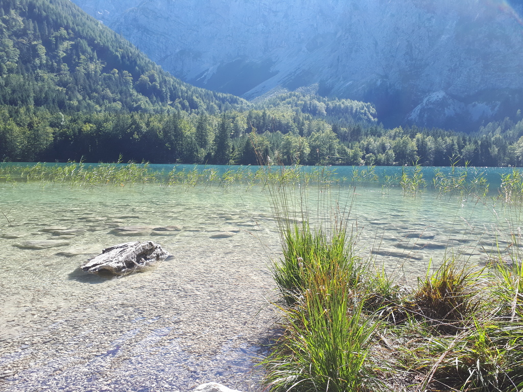 Salzkammergut/Langbathsee. Lots of possibilities of swimming and hiking