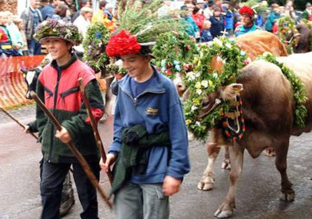 "Alpabtrieb in SCHWARZENBERG in September- event, when the cattle and the ""Älpler"" come back from the alps."