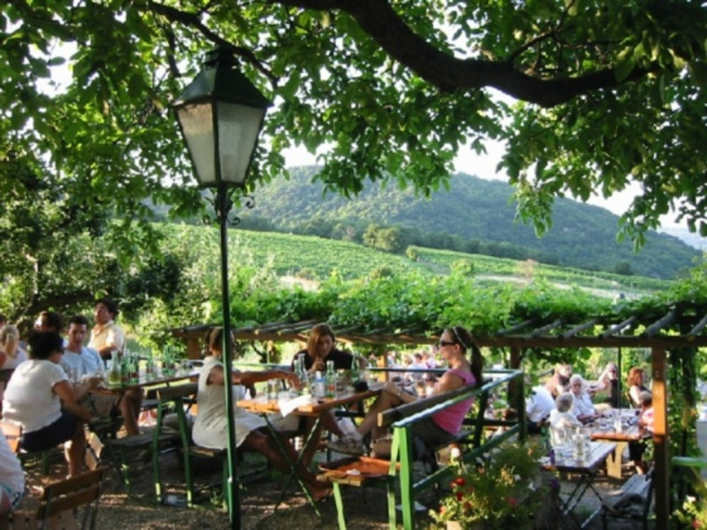 Heurigen - cosy places to drink the new wine - 10 min. from our home
