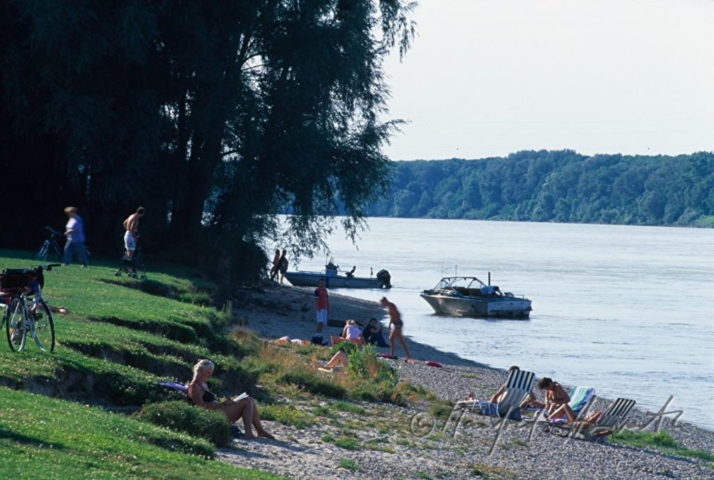 beach at the river danube
