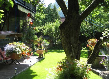 Garten früh morgens