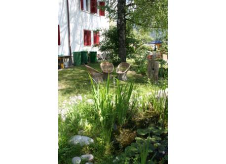 our garden and biotope