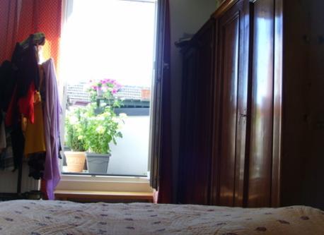 Blick zu Terrasse- Vue vers la terrasse