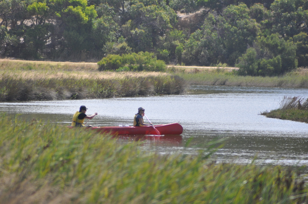 Canoeing at Aireys Inlet