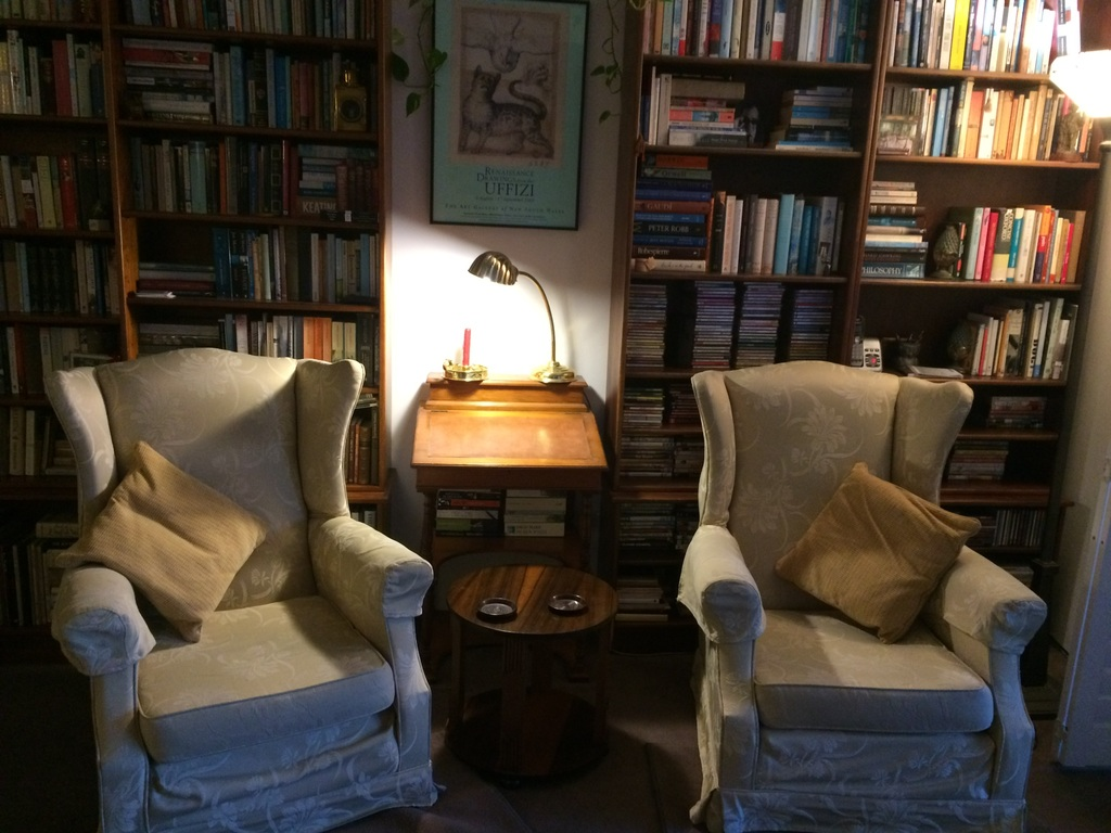 We read, watch TV, and chat in these comfortable chairs