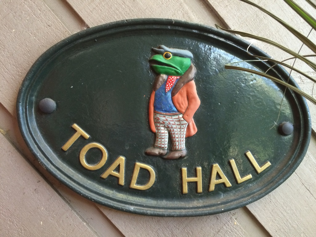 We call our home Toad Hall as it is opposite Frog Hollow