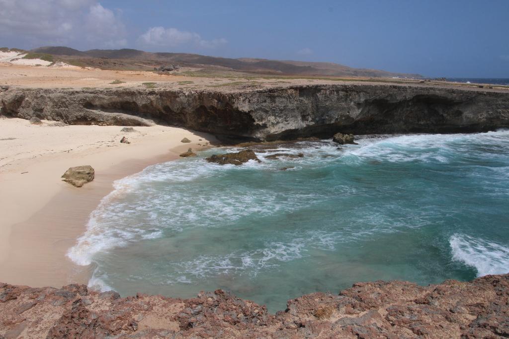 Wild North coast