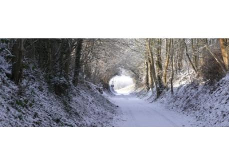 An old hollow road in winter at 200m from our house