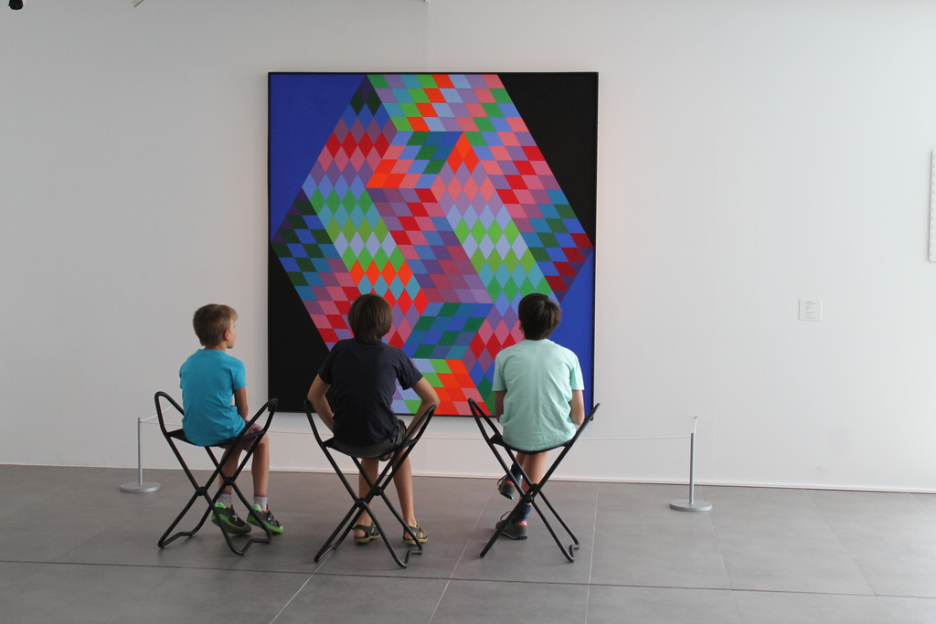 Brothers enjoying modern art