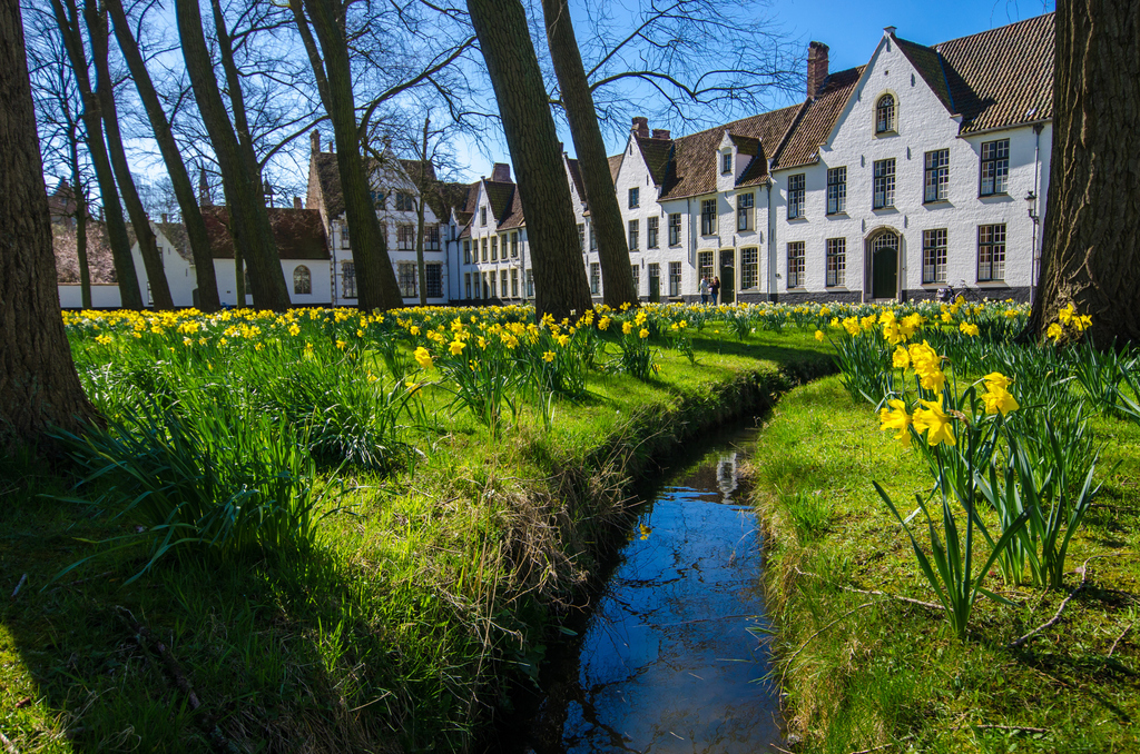 Spring in Bruges