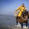 Oostduinkerke, Shrimpfishermen on horseback