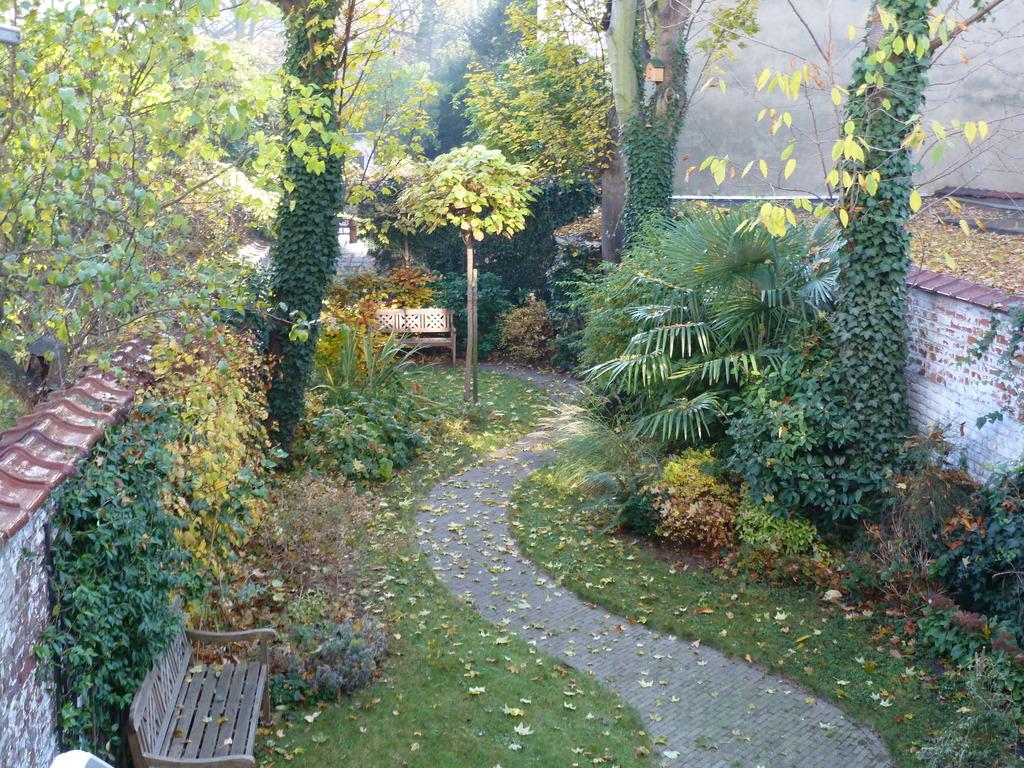Jardin en autumne