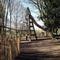 Laarbeekbos Playground