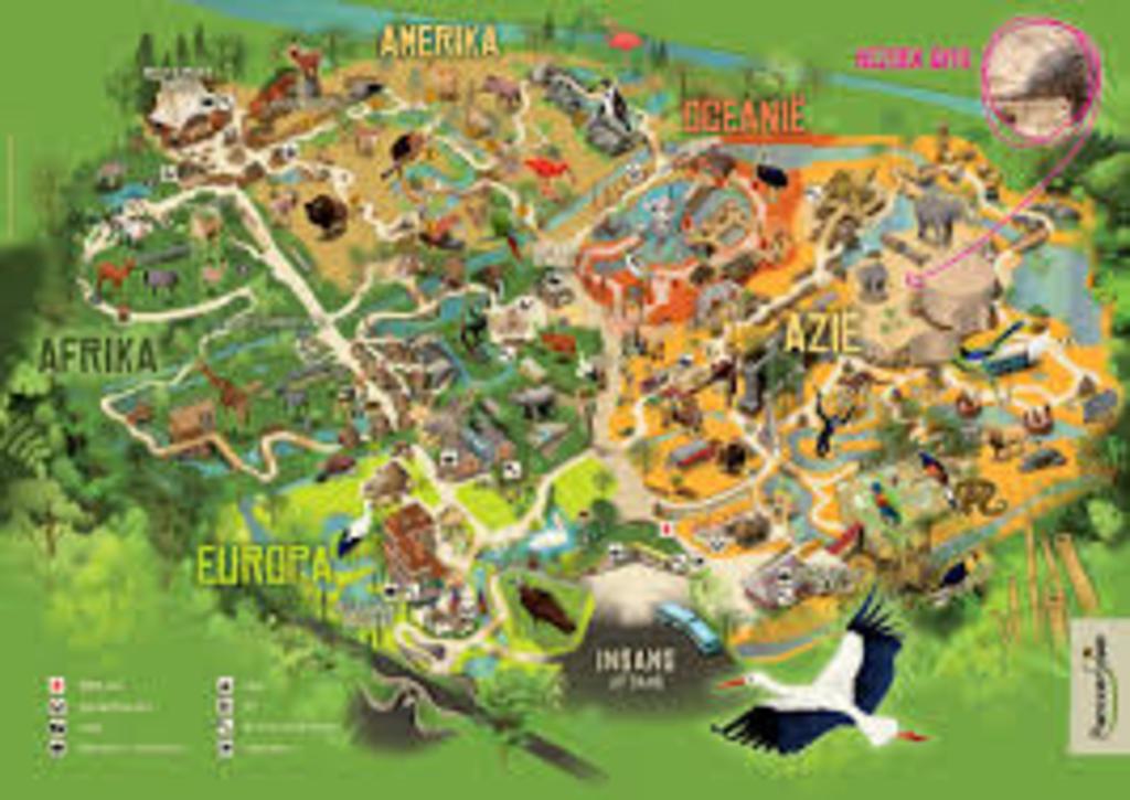 Planckendael Zoo (25min drive)