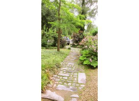 path front door to parking