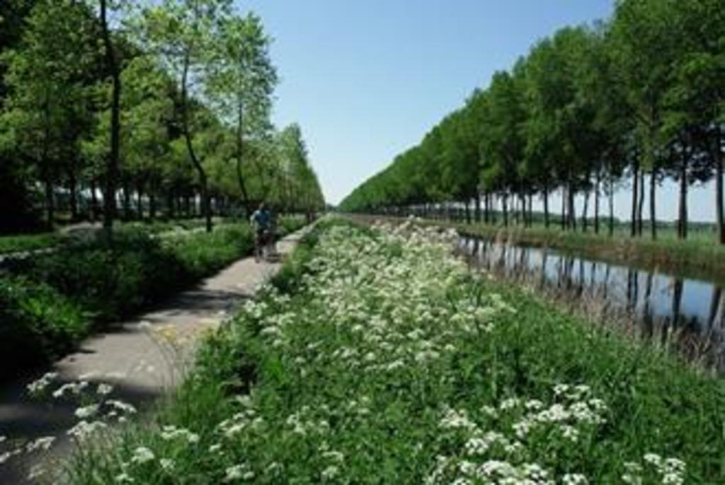 Take your bike and follow the canal untill You are in Holland