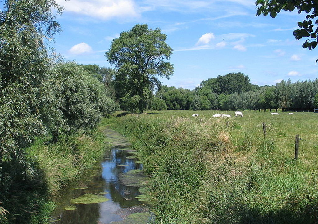 "Vinderhoute - Valley of ""Oude Kale"""