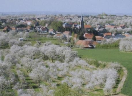 Our region in springtime