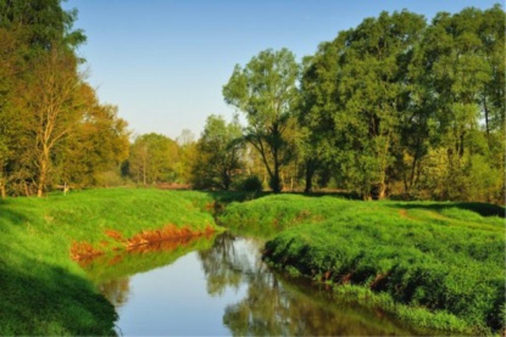 Hulshout River Nete
