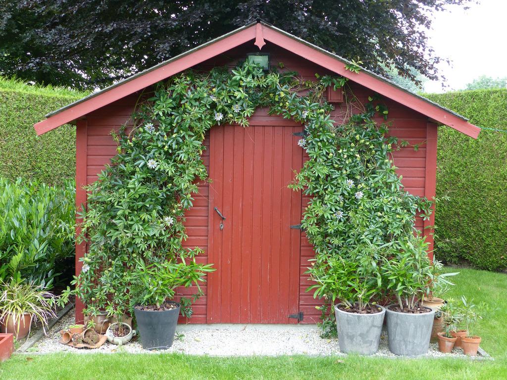 Garden house - July 2021