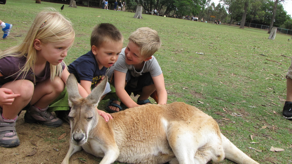Our 3 kids Wine, Korneel and Pepijn in Australia (nov 2012)