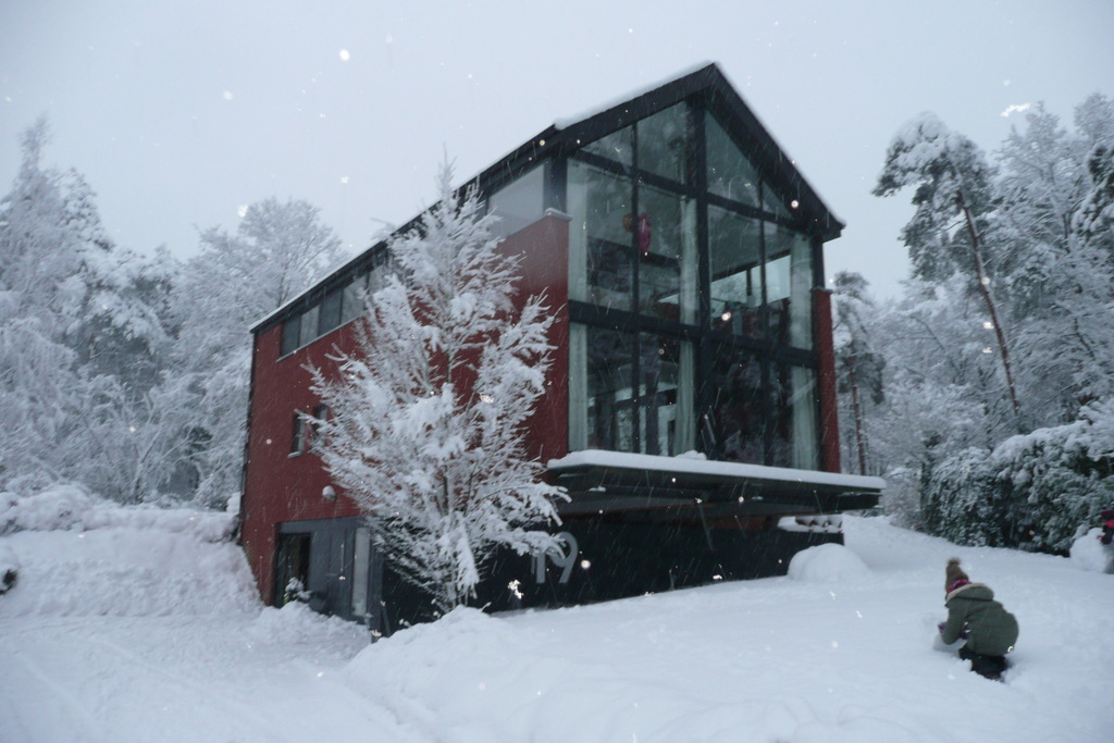 House under the snow
