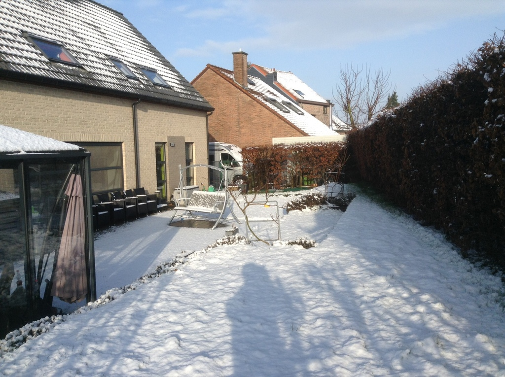Dilbeek Our garden in winter