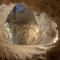 Neolithic mines in Spiennes (20 min) - UNESCO