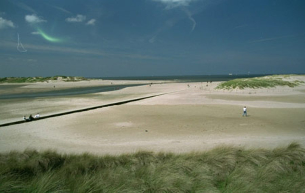 Nature reserve 'Het Zwin' at the seaside