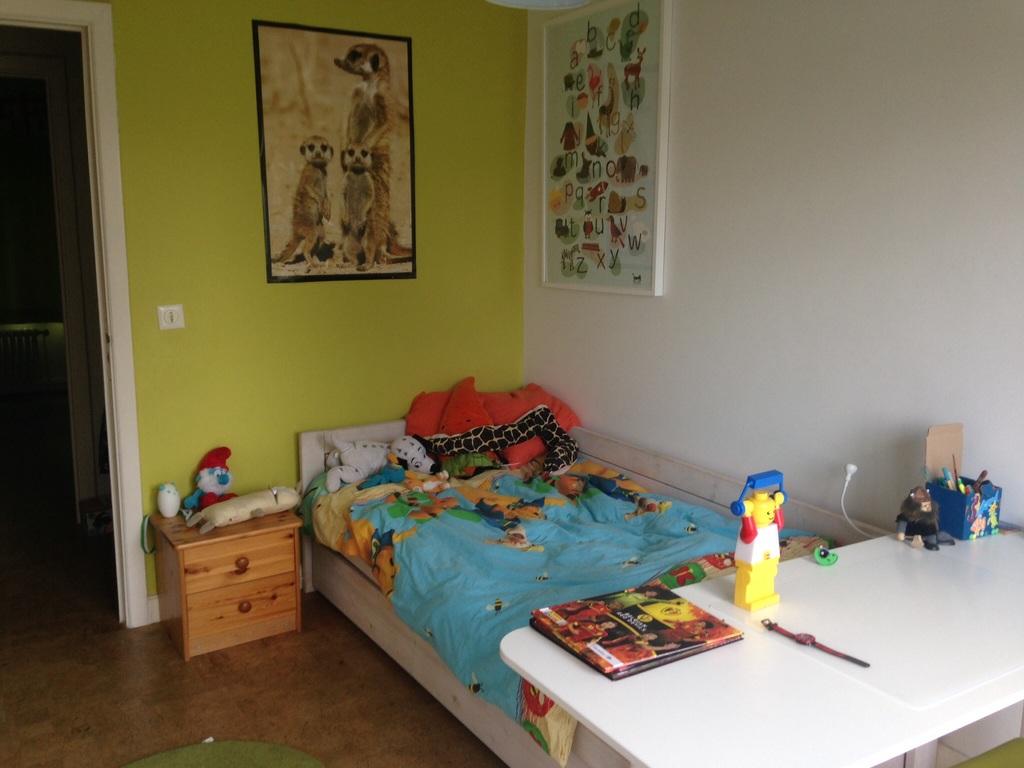 Timon's room