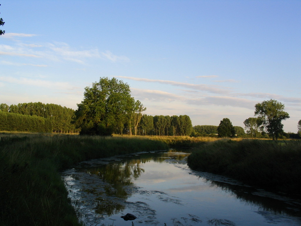 the river Nete (10 min walk)