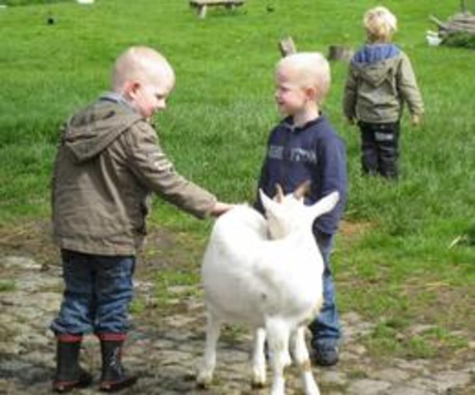 Kinderboerderij Assebroek