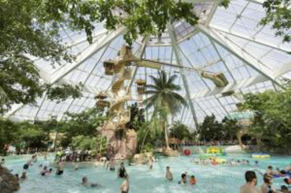 Swimparadise in Mol (40min)