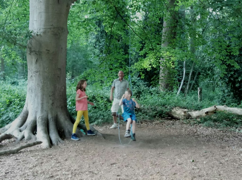 Play forest 'Den Doolhof'. 1km away from us.