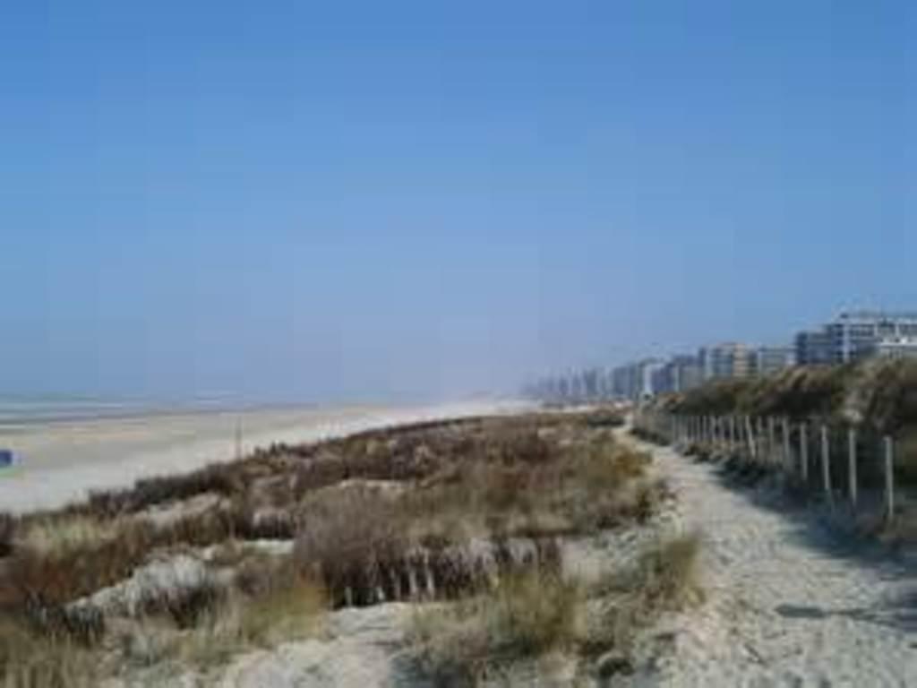 Our Belgian coast