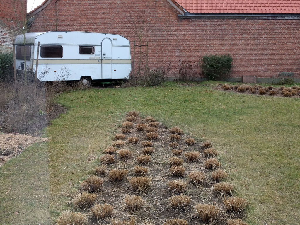 Garden in winter (with play caravan for kids - work in progress)