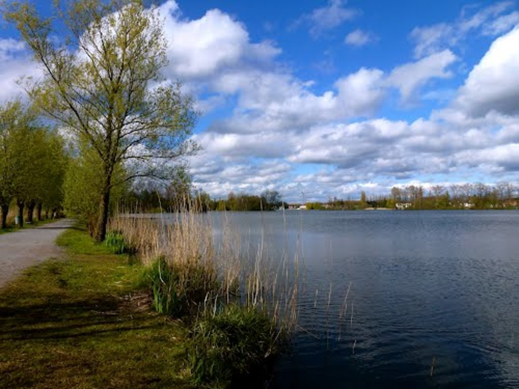 Donk lake, perfect for a walk with the family + enjoy a great meal or icecream - 5 minutes by bike