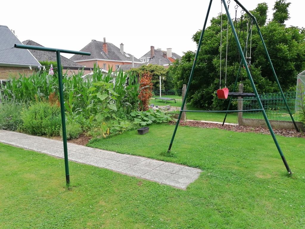 vegetable garden and swings