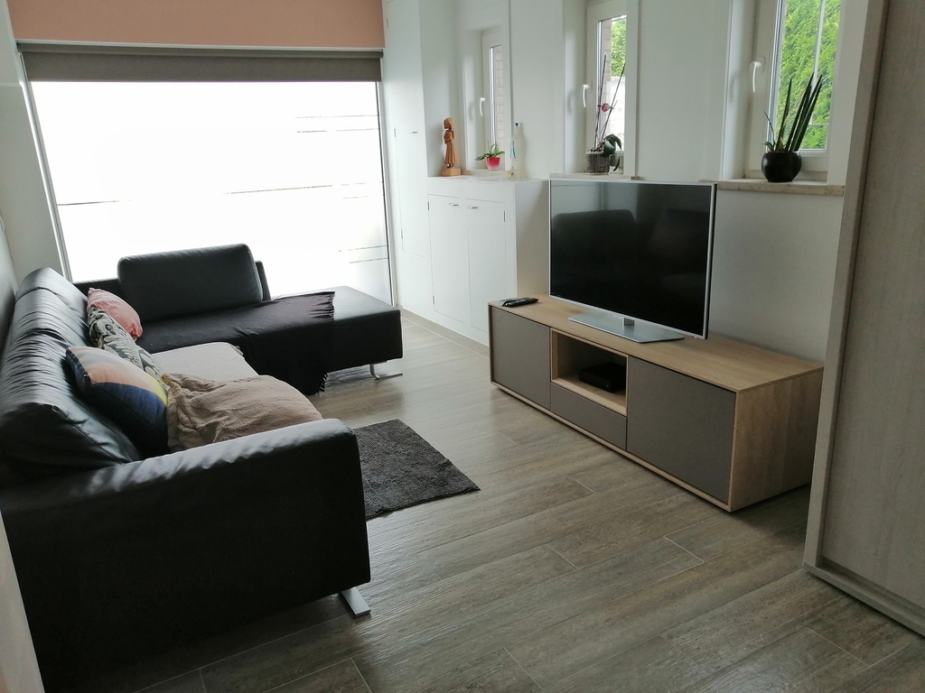 the TV/ play room