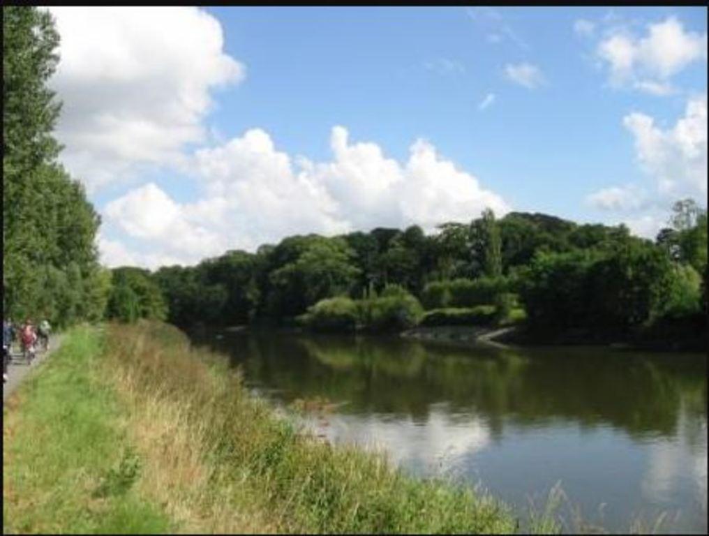 biking or walking routes along the 'schelde' river in Wetteren