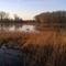'Bourgoyen' NaturePark, 2 km from our house