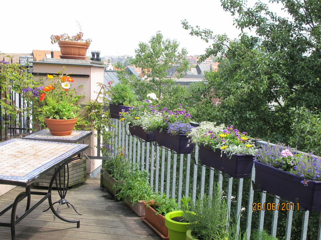 Terrasse dominant petit parc