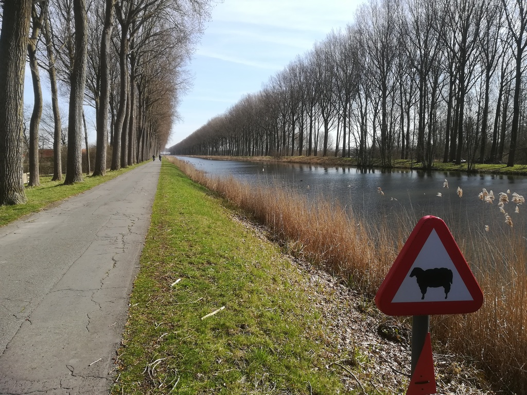 Biking from our house to Sluis in the Netherlands along the canal