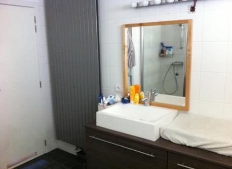 Bathroom (shower + bath)