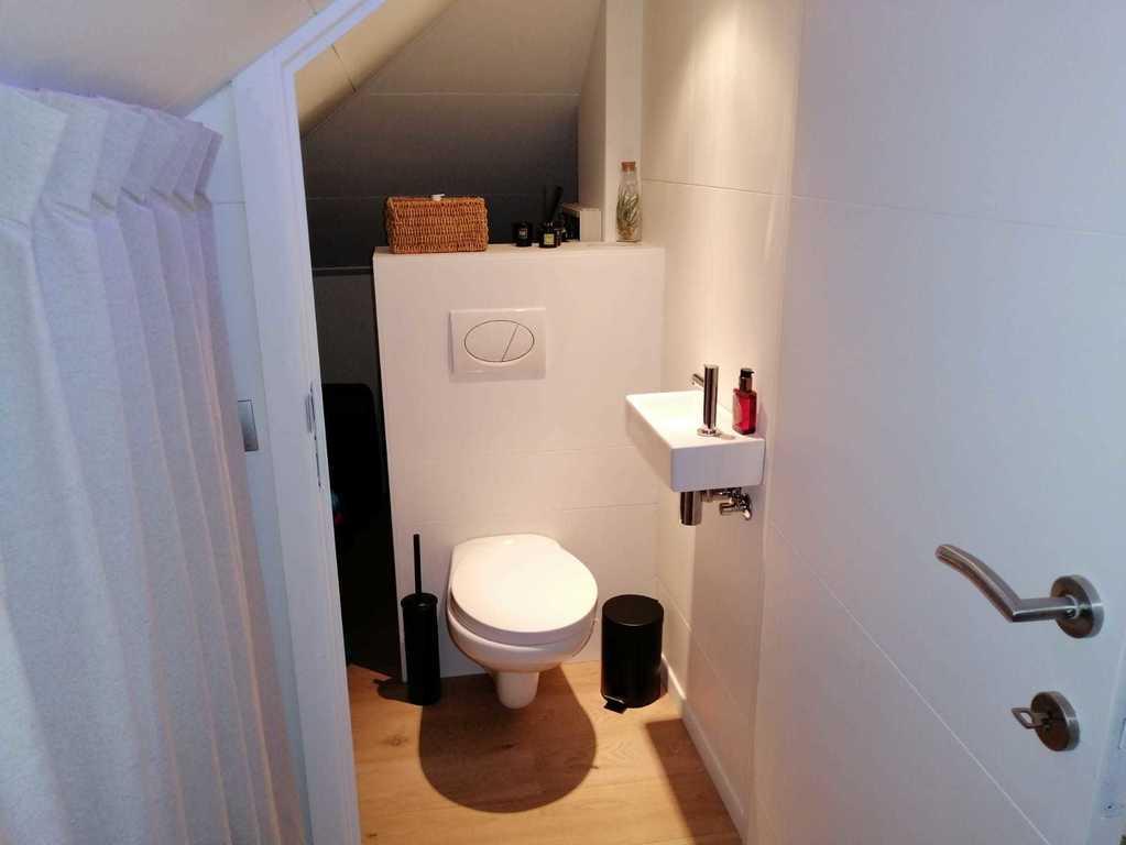 toilet attic